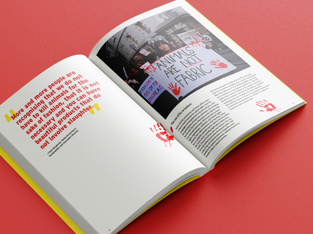 mock-up of publication spread featuring text and image