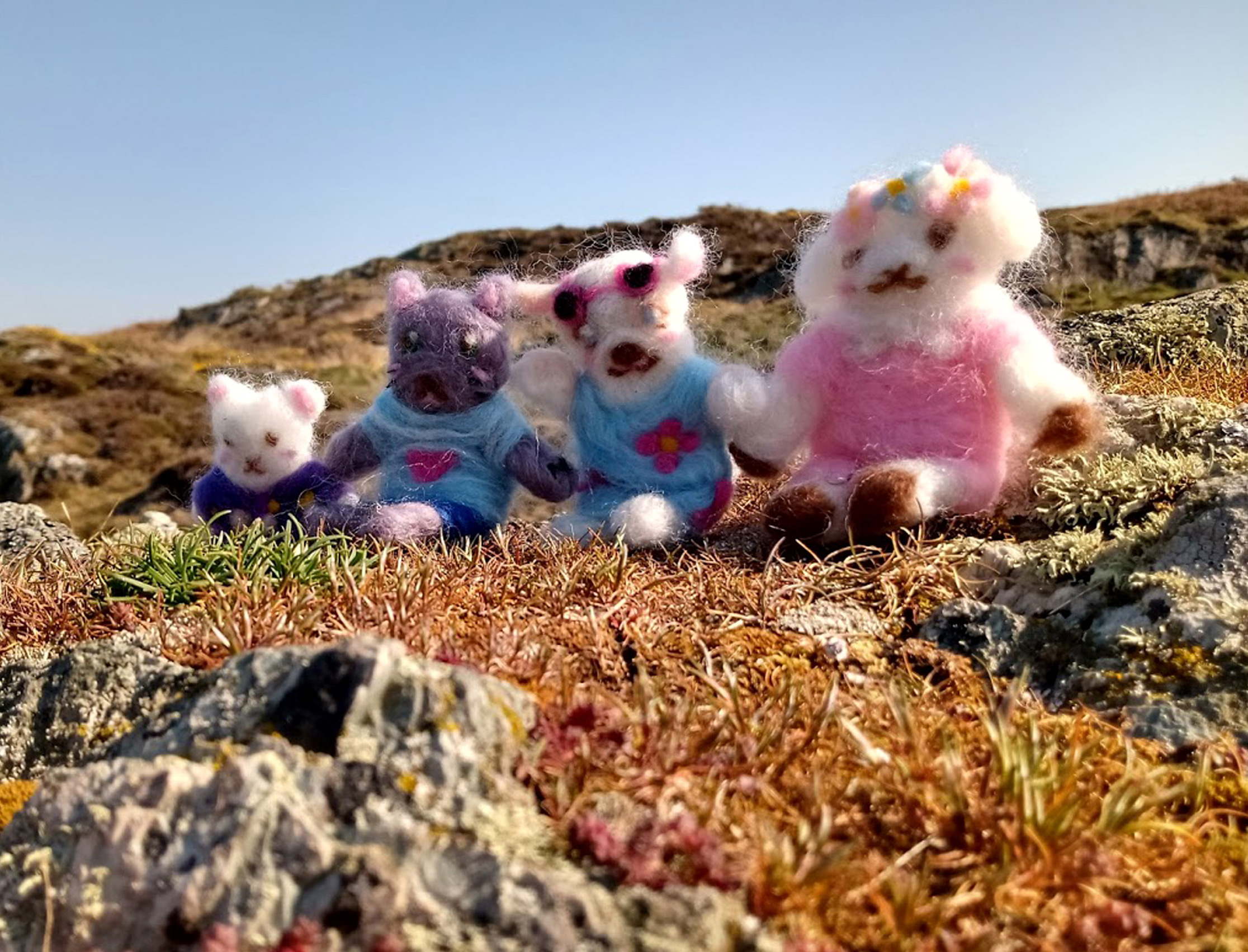 photograph of felt wool animal dolls on a hill