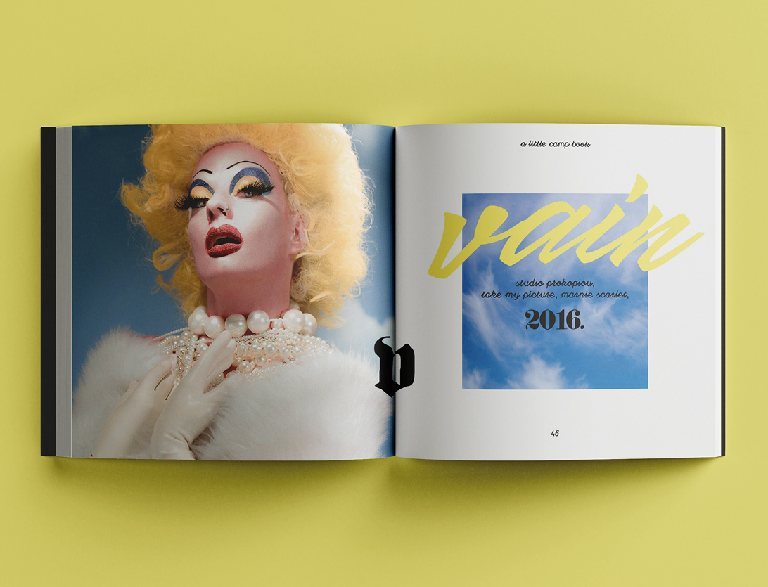 mock-up of publication spread featuring type, image and photography