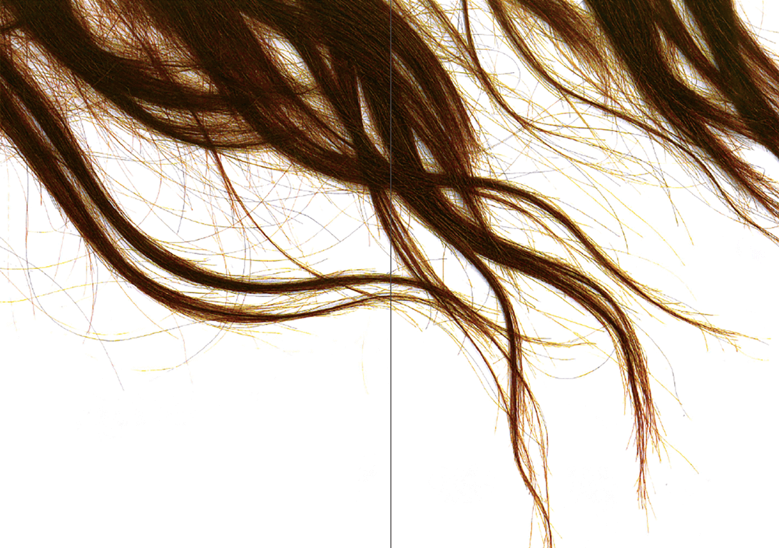 photographic spread of red hair against a white background