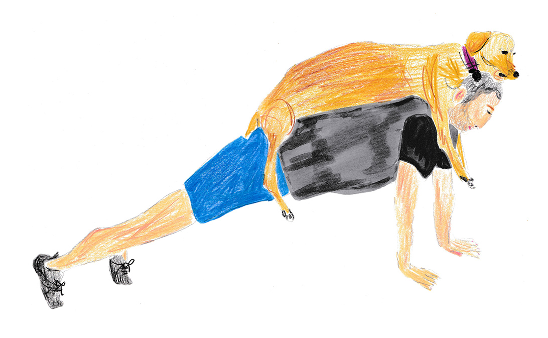 illustration of the plank with a dog